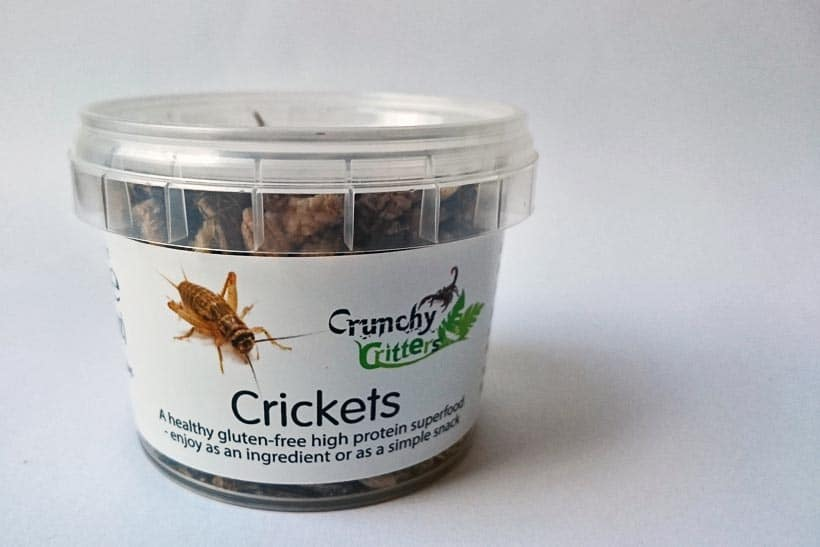 whole edible crickets from crunchy critters